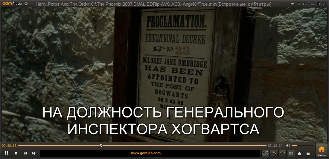 Скачать Гом Плеер на русском языке бесплатно