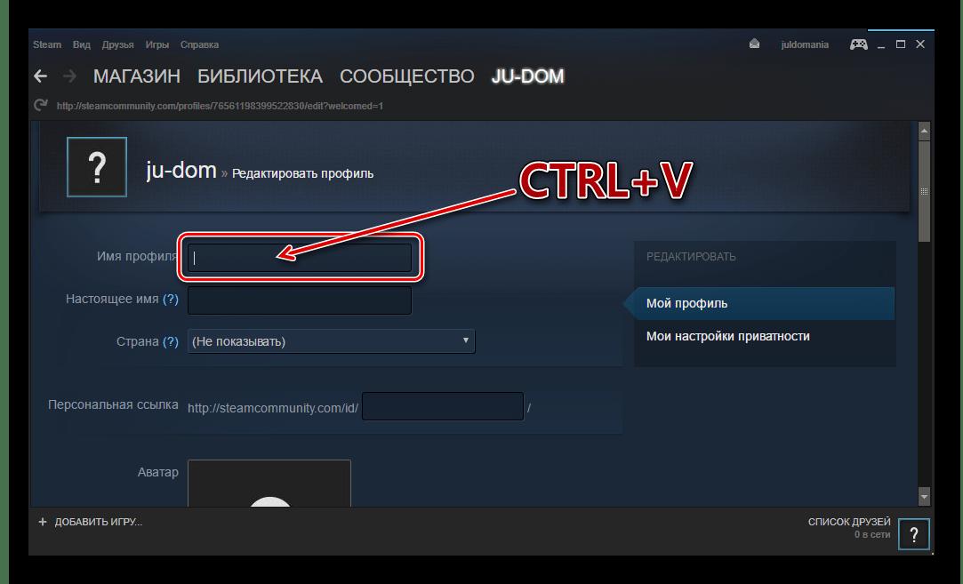 Steam вставить новое имя