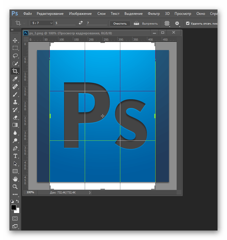 Сетка на снимке в Adobe Photoshop