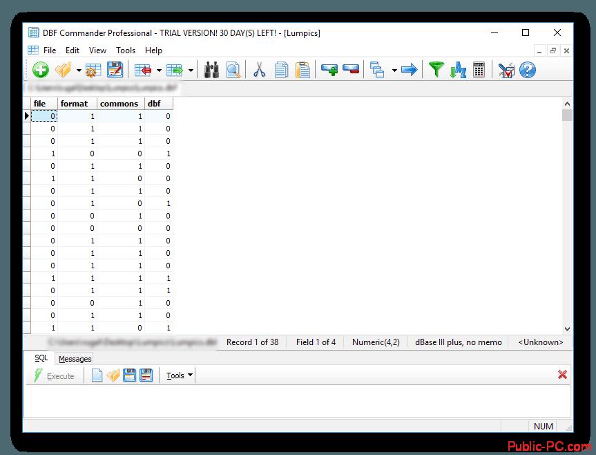 Пример открытой таблицы DBF-Commander