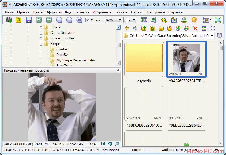 Менеджер изображения в программе Faststone-Image-Viewer