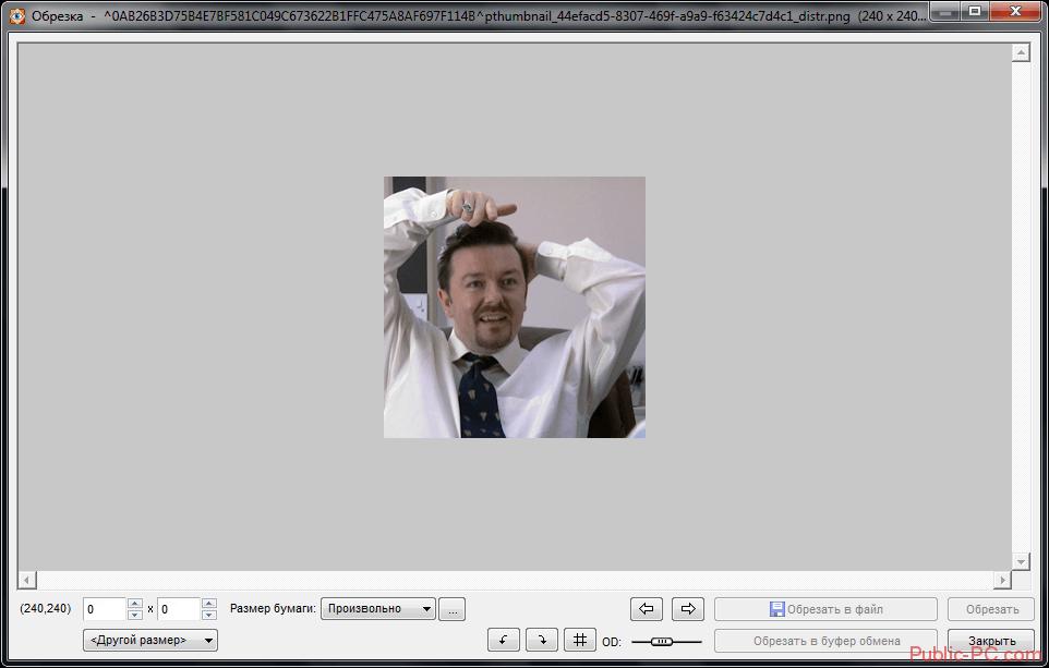 Обрезка изображения в программе Faststone-Image-Viewer
