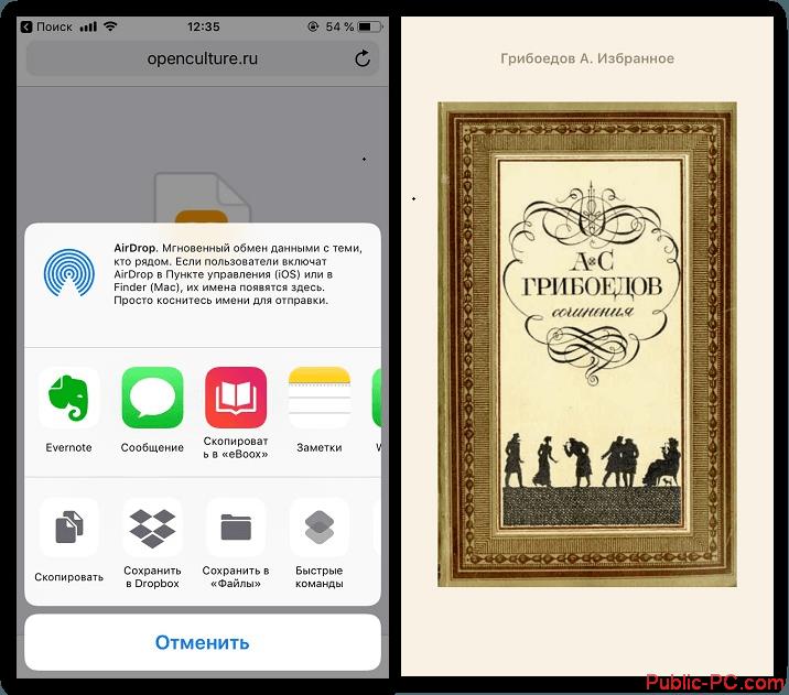 Zagruzka-knig-na-iPhone-cherez-brauzer